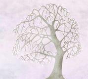 De lente voor oude appelboom vector illustratie