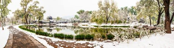 De lente wordt behandeld met sneeuw Stock Afbeeldingen