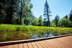 De lente in Yosemite Stock Afbeeldingen