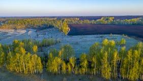 De lente, zonsopgang over gebieden, weiden, berkbosjes, van de hoogte van het epaulet van de vogel stock fotografie