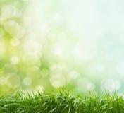 De lenteachtergrond stock fotografie