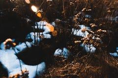 De lenteachtergrond - meltinh en barstend ijs Stock Afbeelding