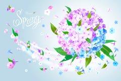 De lenteachtergrond met Flox stock illustratie