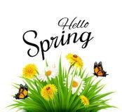 De lenteachtergrond met gras, bloemen en vlinders Royalty-vrije Stock Afbeeldingen