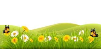 De lenteachtergrond met gras, bloemen en vlinders Stock Foto's