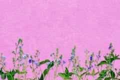 De lenteachtergrond met kleine purpere bloemen Decoratie in delic Royalty-vrije Stock Foto's