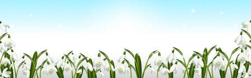 De lenteachtergrond met sneeuwklokjes en blauwe hemel vector illustratie