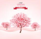 De lenteachtergrond met tot bloei komende sakurabomen Royalty-vrije Stock Foto's