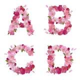 De lentealfabet met kersenbloemen ABCD Stock Fotografie