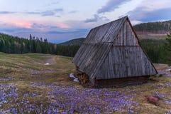 De lenteavond op de bergopen plek Stock Foto