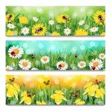 De lentebanners vector illustratie