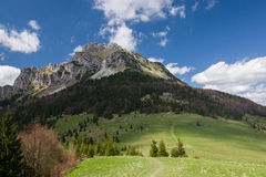 De lentebergen - Grote Rozsutec-heuvel, Weinig Fatra, Slowakije Royalty-vrije Stock Foto's