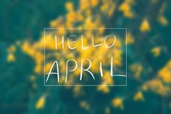 De lentebladeren met vage achtergrond De inschrijving Hello April Stock Foto's