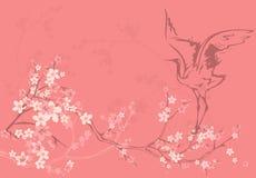 De lentebloei Royalty-vrije Stock Afbeelding