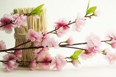 De lentebloei van de bloemen van de appelboom Witte fbackground Stock Foto's