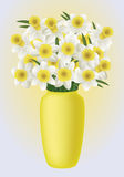 De lentebloem - narcissuses Royalty-vrije Stock Foto