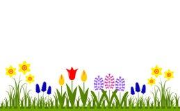 De lentebloemen royalty-vrije illustratie