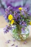 De lentebloemen stock fotografie