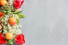 De lentebloemen, abrikozen op een concrete achtergrond Royalty-vrije Stock Foto