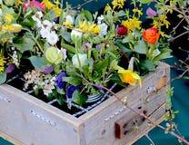 De lentebloemen in een Krat bij de Markt van de Landbouwer stock foto