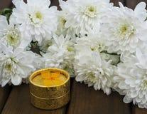 De lentebloemen en giftdoos voor 8 Maart Royalty-vrije Stock Foto