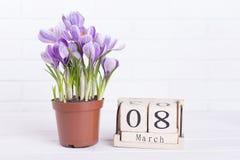 De lentebloemen, kalender, plaats voor tekst Stock Foto's