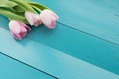 De lentebloemen op de Raad Stock Afbeelding