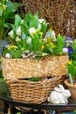De lentebloemen op de straat worden verkocht die Bloemen in ceramische potten Pasen-markt op de straten van Wenen stock foto