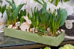 De lentebloemen op de straat worden verkocht die Bloemen in ceramische potten Pasen-markt op de straten van Wenen stock foto's