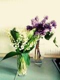 de lentebloemen in de vaas stock afbeelding