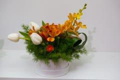 De lentebloemstukken Stock Foto's