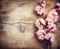 De lentebloesem