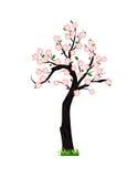 De lenteboom in bloesem royalty-vrije illustratie