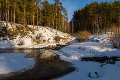 De lentebos op de banken van de rivier, Royalty-vrije Stock Afbeelding