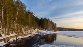 De lentebos op de banken van de rivier, Royalty-vrije Stock Fotografie