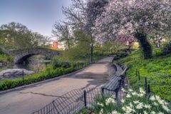De lentecentral park, de Stad van New York royalty-vrije stock fotografie
