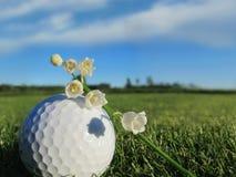 De lentedag bij de golfcursus Stock Foto