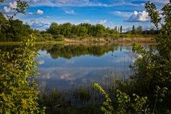 De lentedag bij de rivier Stock Foto's