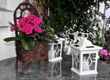 De lentedecoratie Royalty-vrije Stock Afbeeldingen