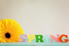 De lentedocument woord met gele bloem op achtergrond Hello-de Lente De lentebehang Royalty-vrije Stock Afbeelding