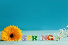 De lentedocument woord met gele bloem op blauwe achtergrond Hello-de Lente De lentebehang Royalty-vrije Stock Foto