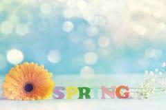 De lentedocument woord met gele bloem op blauwe achtergrond Hello-de Lente De lentebehang Stock Foto