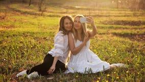 De lentegang in bos stock fotografie