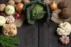 De lentegroenten op een donkere achtergrond: Savooiekool, bloemkool, ui, knoflook, koolraap, selderiewortel, dille Stock Foto's