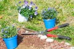 De lentehuis die, en bloemen in orde maken planten tuinieren Stock Fotografie