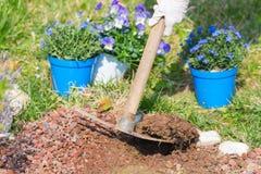 De lentehuis die, het schoffelen grond en het planten van bloemen tuinieren Stock Afbeeldingen