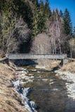 De lenteindrukken van marbach, emmentaler entlebuch Zwitserland stock afbeeldingen