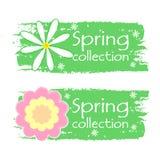 De lenteinzameling met bloementekens, groene getrokken etiketten Stock Foto's