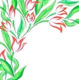 De lentekaart met hand geschilderde tulpen Stock Foto's