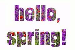 De lentekaart met het van letters voorzien Rood en purper bloemengebied vector illustratie